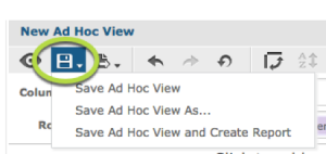 Save Ad Hoc View Options