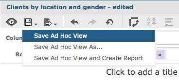 Save Ad Hoc View